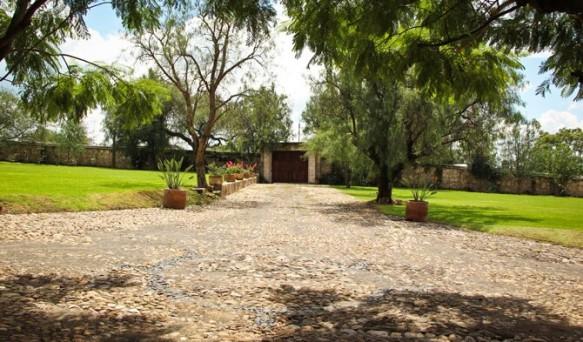 jardin_bugambilias_lacantera01