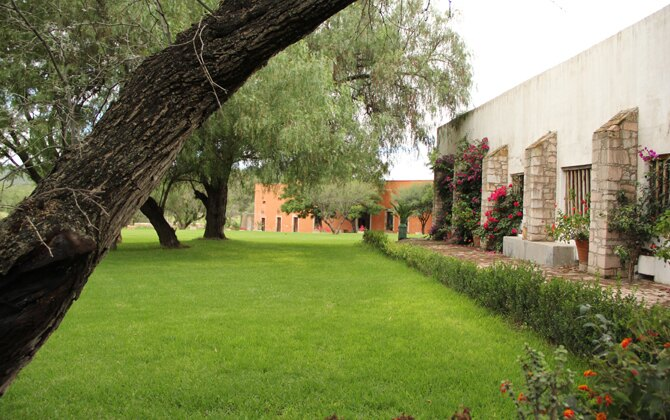 Hacienda la cantera jardin de las bugambilias for Jardines de la hacienda