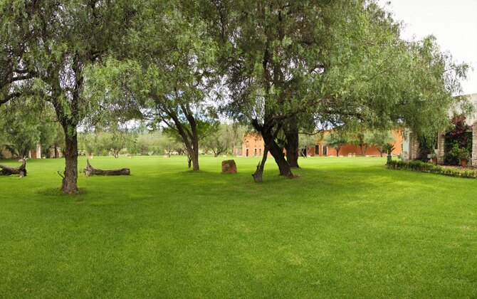 jardin_bugambilias_lacantera06